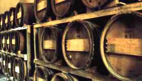 vino toscana italia
